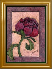 Deco Rose - Colored Pencil Original by Tammy